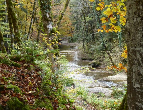 Cascades Herisson
